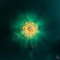 1-fleur