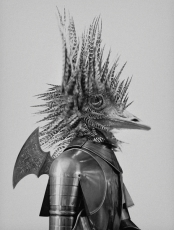 bm-tellus-avestruz-600pix