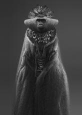 bm-tellus-gorila-600pix