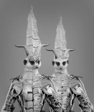 bm-tellus-suricatas-600pix