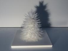 arbre-acc80-plume-20-x-20-x-20-cm-copie