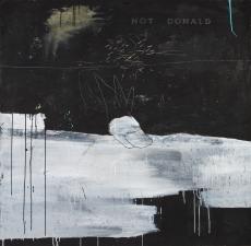 not-donald-bois-x-120-cm